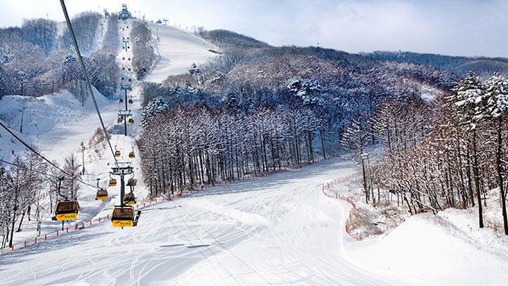 Phoenix Snow Park, Korea